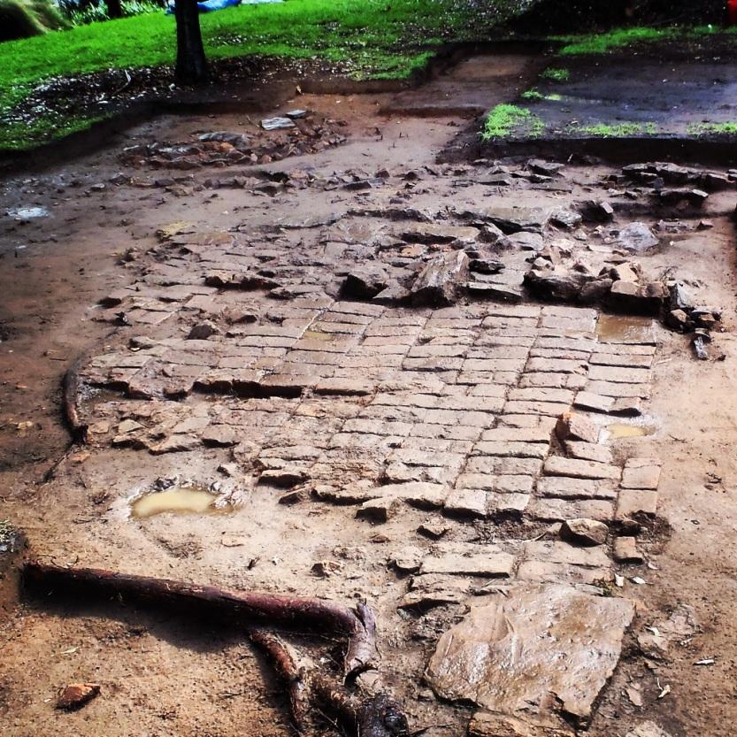 Remains of a convict hut floor, Murray Gardens, Parramatta Park, (19 September 2015). Photo by John M. Cameron.