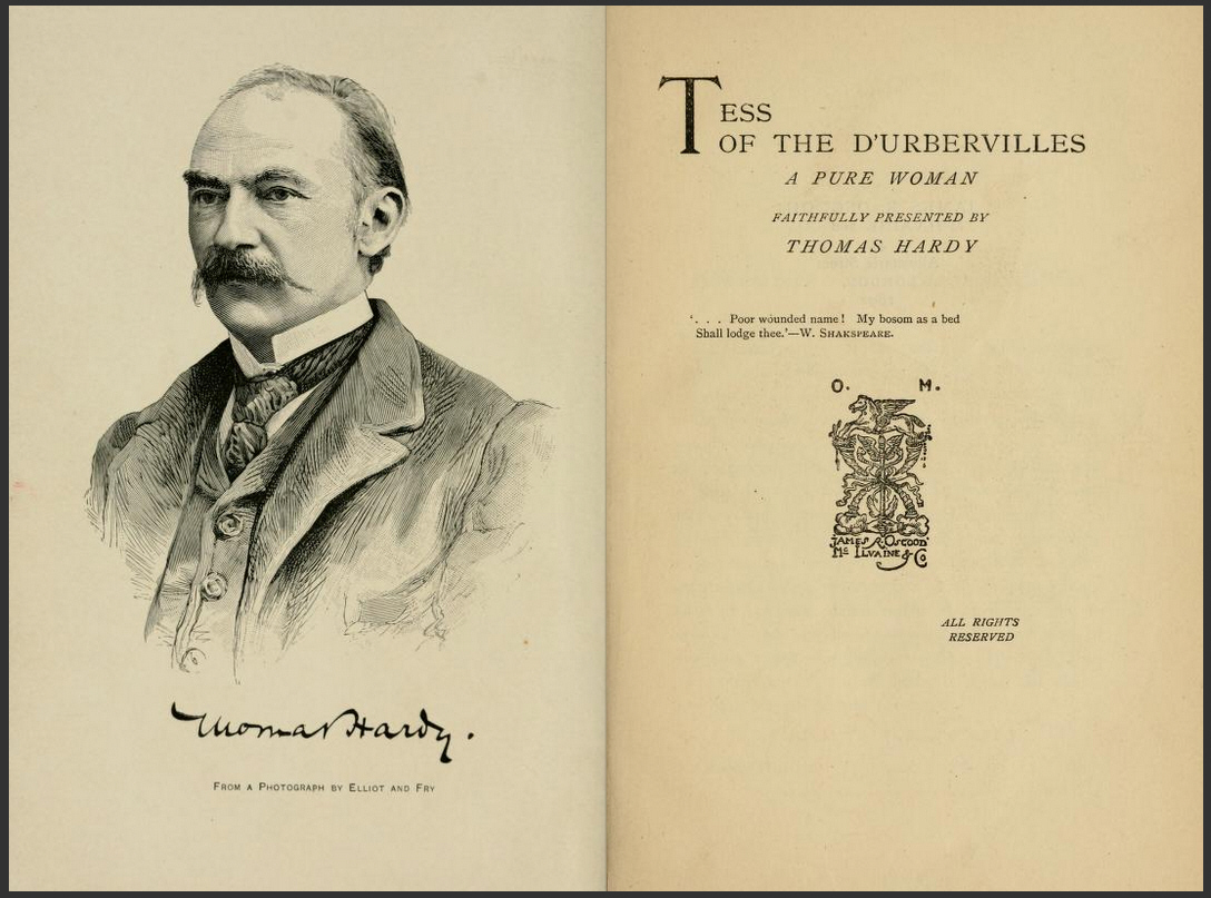 tess of the durbervilles hypocrisy essay Thomas hardy's ''tess of the d'urbervilles: a pure woman'', published in 1890, is a novel which roused much controversy and dissension as it disputed many of the principles and beliefs held by victorian society.